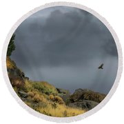 Round Beach Towel featuring the photograph Stormy Flight by Frank Wilson