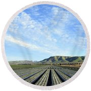 Round Beach Towel featuring the photograph Strawberry Fields Forever 2 by Floyd Snyder