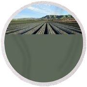 Round Beach Towel featuring the photograph Strawberry Fields Forever 3 by Floyd Snyder