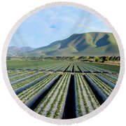 Round Beach Towel featuring the photograph Strawberry Fields Forever by Floyd Snyder