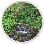 Stream In The Rainforest Round Beach Towel