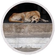 Street Dog Sleeping On Steps Round Beach Towel