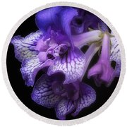 Round Beach Towel featuring the photograph Streptocarpus 'blue Frills' by Ann Jacobson