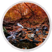 Round Beach Towel featuring the photograph Stress Relief by Edward Kreis