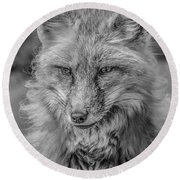 Striking A Pose Black And White Round Beach Towel
