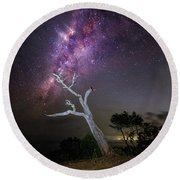 Striking Milkyway Over A Lone Tree Round Beach Towel