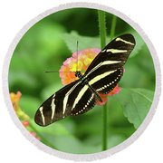 Striped Butterfly Round Beach Towel