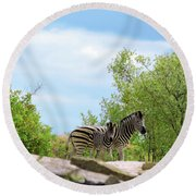 Mama, Who's That Idiot Taking My Picture? Round Beach Towel