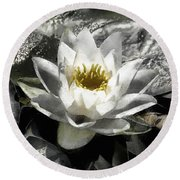 Strokes Of The Lily Round Beach Towel