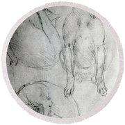 Study Of A Dog And A Cat Round Beach Towel