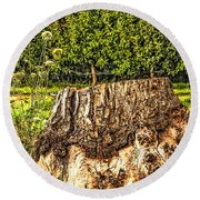 Stumped In The Orchard Round Beach Towel by Nancy Marie Ricketts