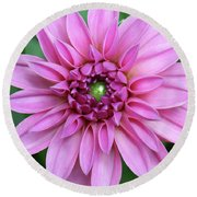 Stunning Beauty Round Beach Towel