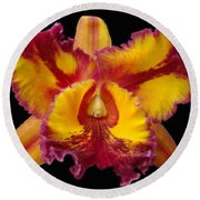 Stunning Orchid Closeup Round Beach Towel by Sue Melvin