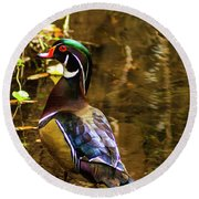 Stunning Wood Duck Round Beach Towel
