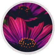 Round Beach Towel featuring the photograph Sublime by Sharon Mau