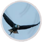 Successful Bald Eagle Round Beach Towel by Jeff at JSJ Photography