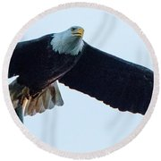 Successful Bald Eagle Panoramic Round Beach Towel by Jeff at JSJ Photography