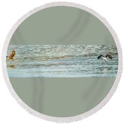 Successful Dynamic Duo Panoramic Round Beach Towel by Jeff at JSJ Photography