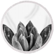 Succulents Flowers Black Round Beach Towel