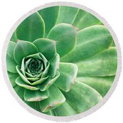 Succulents II Round Beach Towel