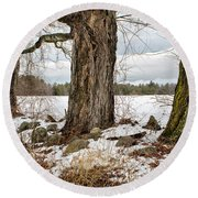 Round Beach Towel featuring the photograph Sugar Maples  by Betty Pauwels