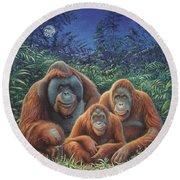 Sumatra Orangutans Round Beach Towel by Hans Droog