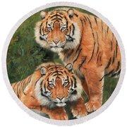 Sumatran Tigers Round Beach Towel