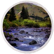 Round Beach Towel featuring the photograph Summer At The Animas River by Ellen Heaverlo