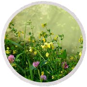 Round Beach Towel featuring the photograph Summer Begins by Betty-Anne McDonald