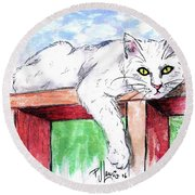 Summer Cat Round Beach Towel