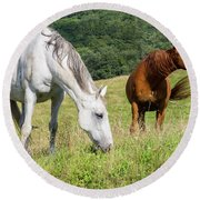 Summer Evening For Horses Round Beach Towel