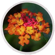 Summer Floral Colors Round Beach Towel