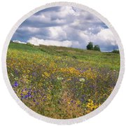 Round Beach Towel featuring the photograph Summer Flowers by Tom Singleton