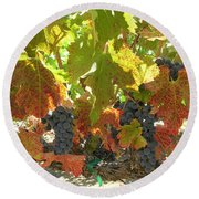 Summer Grapes Round Beach Towel