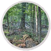 Summer In A Canadian Forest Round Beach Towel
