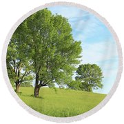 Summer Trees Round Beach Towel