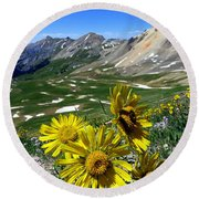 Round Beach Towel featuring the photograph Summer Tundra by Karen Shackles