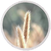 Summer Wild Grass Round Beach Towel