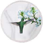 Round Beach Towel featuring the photograph Summer's Bounty by Sue Collura
