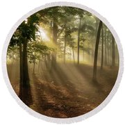 Round Beach Towel featuring the photograph Sun And Clouds by Norman Peay
