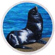 Sun Bathing Sea Lion Round Beach Towel
