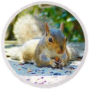 Sun Bathing Squirrel Round Beach Towel