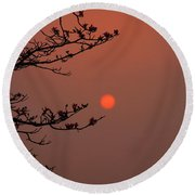 Sun Blossoms Nature Asia  Round Beach Towel