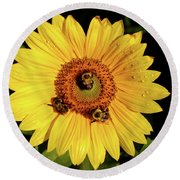 Sunflower And Bees Round Beach Towel by Nancy Landry