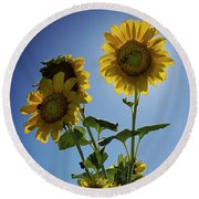 Sun Flowers Round Beach Towel