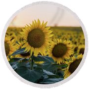 Sun Flowers IIi Round Beach Towel