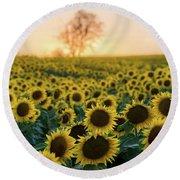 Sun Flowers Iv Round Beach Towel