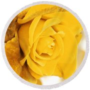 Round Beach Towel featuring the photograph Sun Kissed Rose by Athala Carole Bruckner