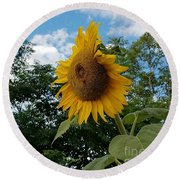 Round Beach Towel featuring the photograph Sun Power by Angela J Wright