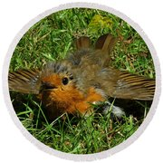 Sunbathing Robin Round Beach Towel